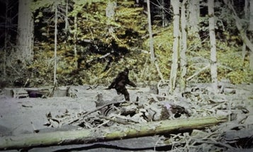 Shooter Mistakes Man for Sasquatch