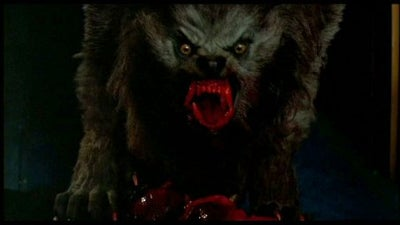 What Gun Would You Use to Hunt a Werewolf?