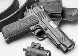 First Look: The Wilson Combat Protector