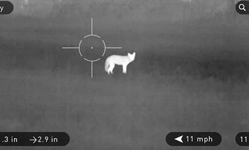 10 Best Night Sights and Thermal Scopes