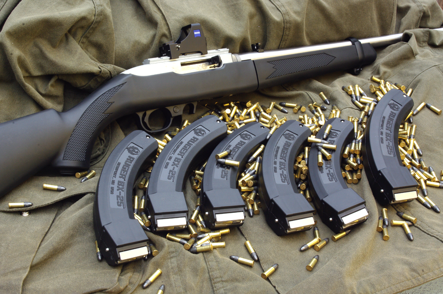 The Ruger 10/22 Take-Down model