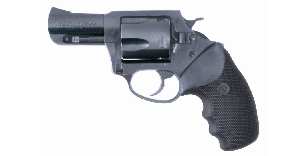The Bulldog from Charter Arms.