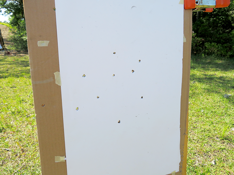 At 10 yards, the Aguila buckshot minishell gave the author a 10-inch pattern on average.