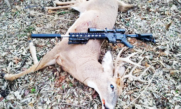 Indiana Deer Hunters Can't Use Rifles on Public Land