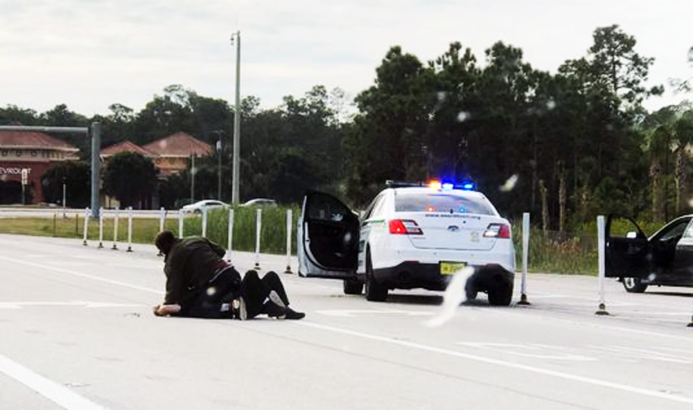 Video Released of Concealed Carrier Saving Florida Deputy from Highway Attack
