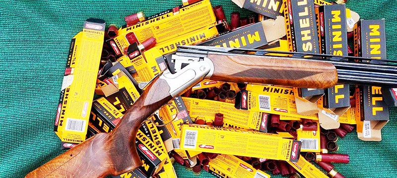 Aguila MiniShells: A Great Trainer for Beginning Shooters