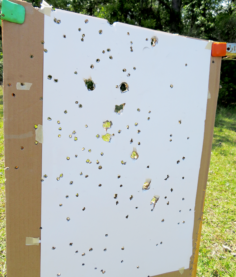 Slugs and buckshot at 10 yards fired from the hip.