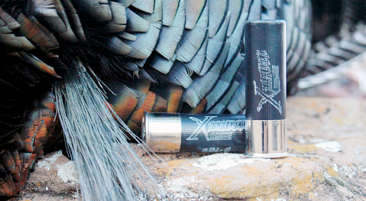 Unfortunately now discontinued, Winchester's Xtended Range ammunition, a tungsten-based shotshell, was—and still is if you still have any—devastating for both turkeys and waterfowl.