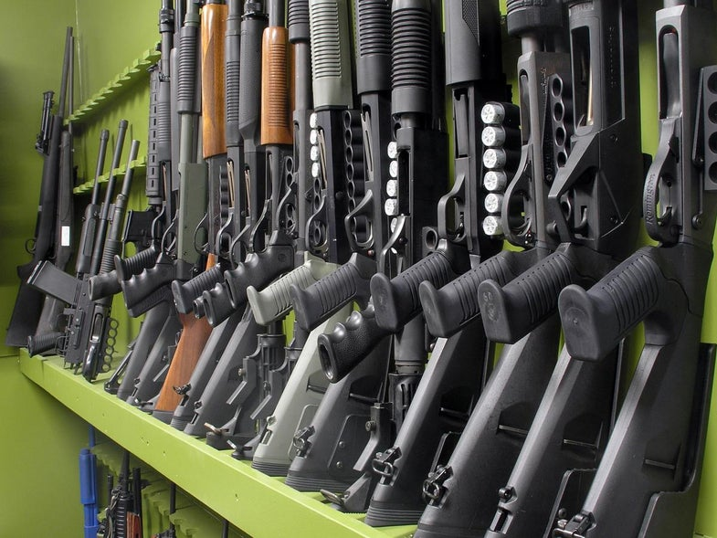 Poll: Majority of Americans Oppose Assault Weapons Ban