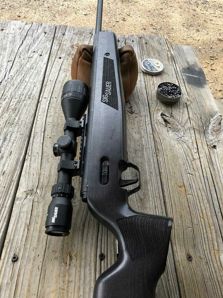 scoped Sig Air ASP 20
