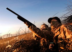 California Begins Roll-Out of Lead Ban for Hunting Ammo