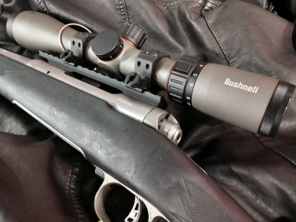 bushnell riflescope