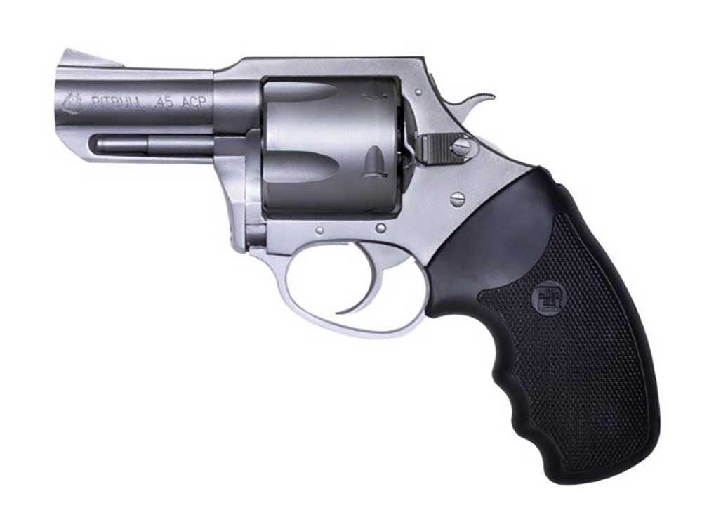 Charter Arms Pit Bull