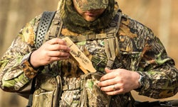Turkey Hunting: What You Need to Hunt Spring Gobblers