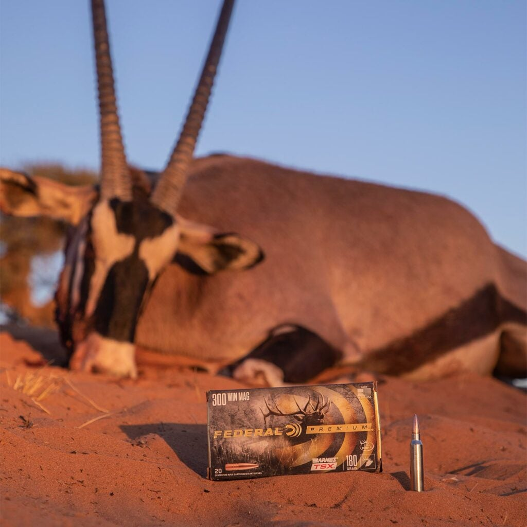 pronghorn hunting federal ammo