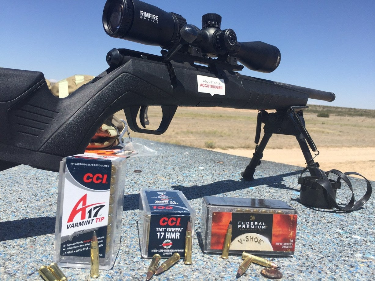 Rifle Training: The Rimfire Regimen for Becoming a Marksman