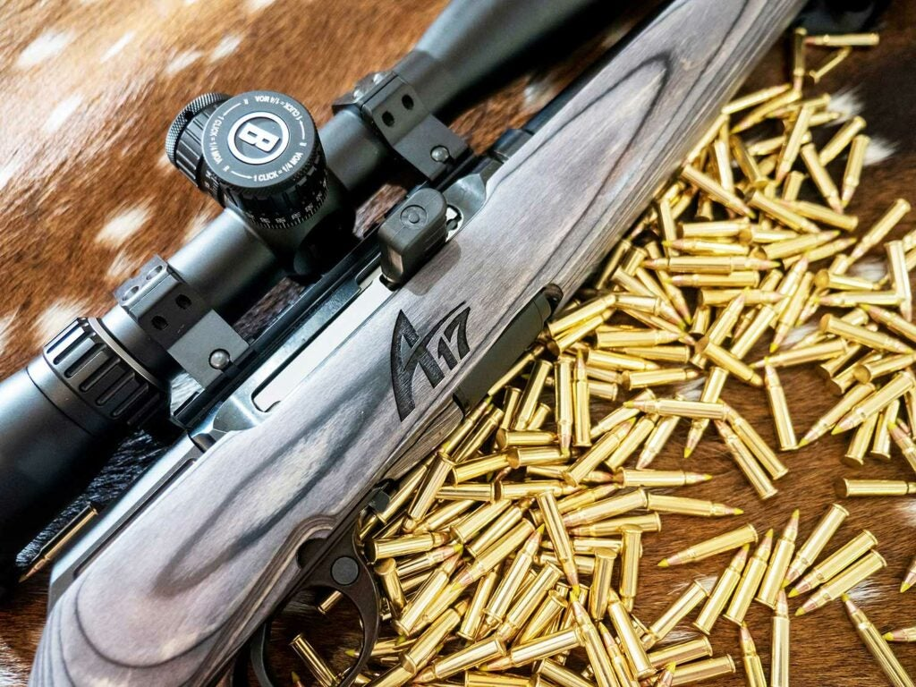savage a17 rifle and bullets
