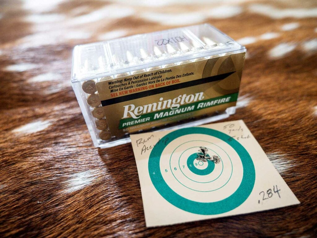 savage a17 rifle shot groups with remington ammo